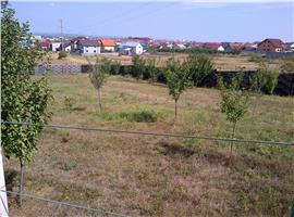 Vanzare teren Trivale zona Pini